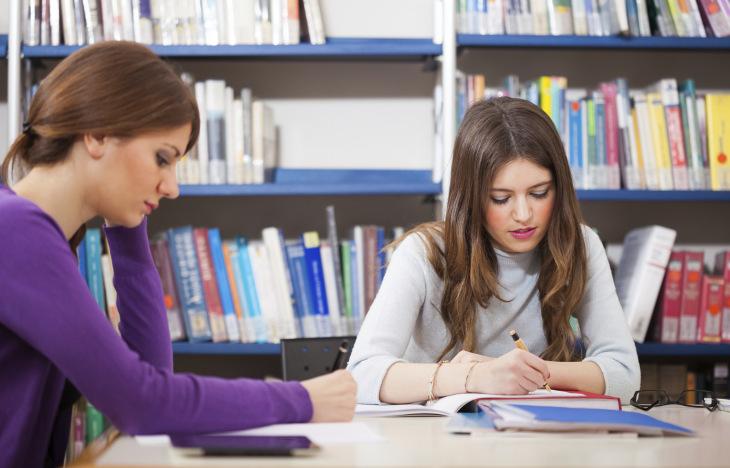 lærerstudenter i praksis artikkel